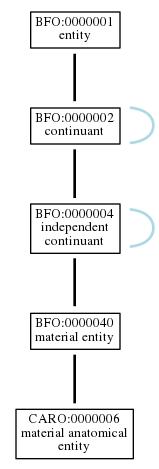 Graph of CARO:0000006