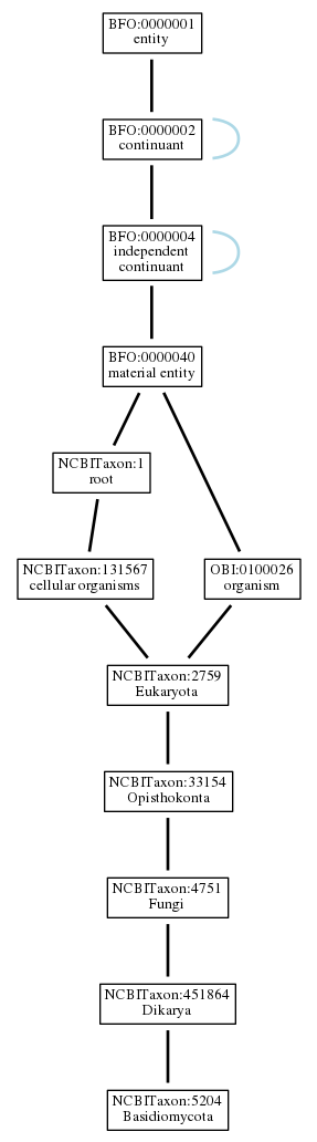 Graph of NCBITaxon:5204