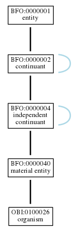 Graph of OBI:0100026